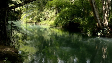 Beautiful river in a deep forest