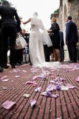 Sposa, petali e riso