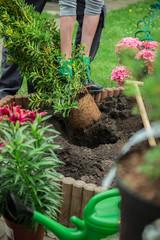 ein junger Mann arbeitet im Garten