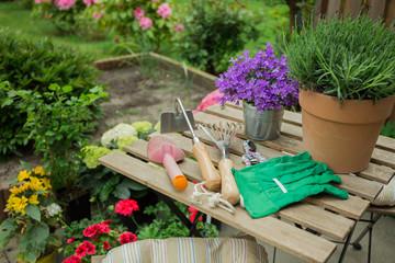 Schone Blumen im Garten