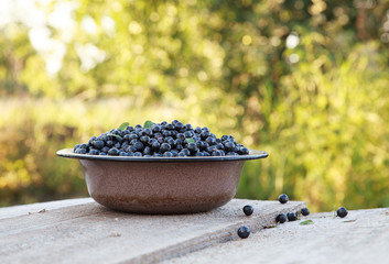 Ripe wild blueberries in a old bowl on the wooden table