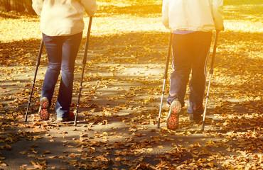 Senior couple making Nordic walking in park