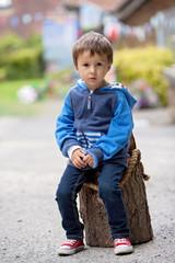Portrait of a boy, sitting on a tree trunk
