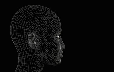 Head woman wireframe