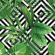 tropical palm leaves pattern, geometric background - 83346091