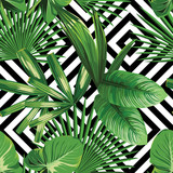 Fototapety tropical palm leaves pattern, geometric background