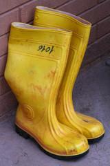Stivali in gomma gialli da lavoro