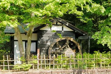 新緑と水車小屋