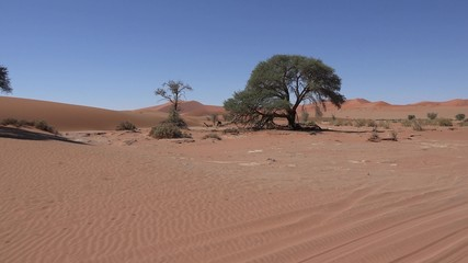 Namib Dessert at Sossusvlei (Namibia, 4K footage)