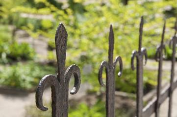 Ancient iron fence