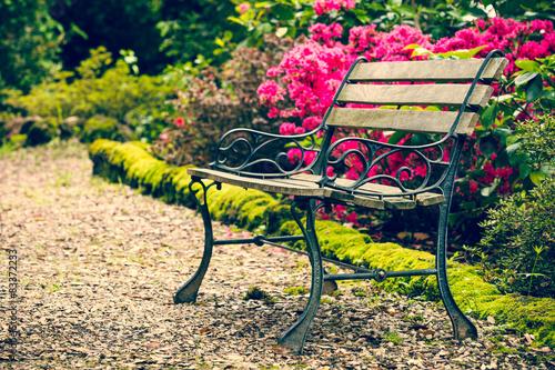 Fototapety, obrazy : Bench in the park