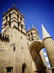 Eglise Saint-Pierre de Montpellier
