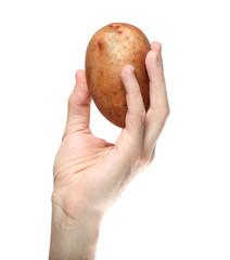 Man`s hand holding potato isolated on white background