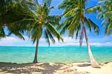 Karibischer Strand mit Palmen :)
