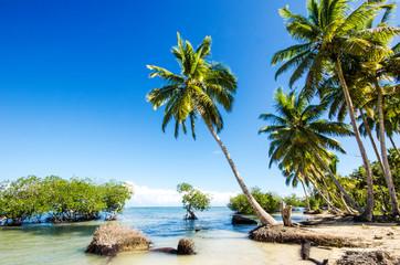 Traumstrand in der Karibik :)