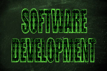 illustration of the word Software Development with a binary code
