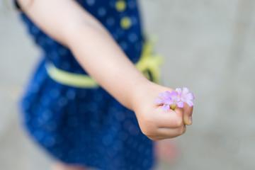スミレの花を持つ子供の手
