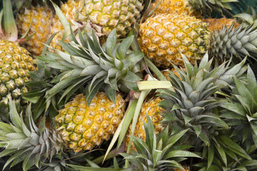 Group of pineapple fruit