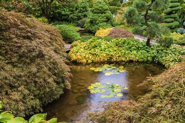 Quiet little pond