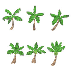 coconut tree cartoon style, vector
