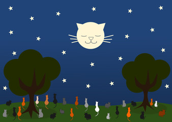 cat looking moon cat in a beautiful starry night
