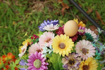 Egg with beautiful flowers at the park.