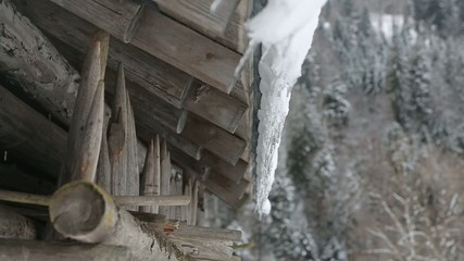 icicles at a hut in winter in germany