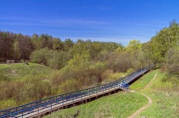 Footbridge over the marshy ravine.