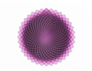 Creative circular flower pattern on white background