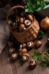 Scaly Wood Mushroom