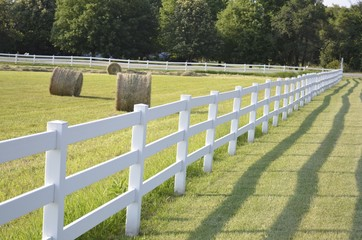 White country fence boarding a pasture