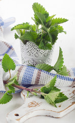 raw mint leaves