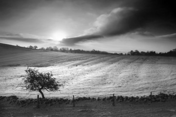 Beautiful snow covered sunrise Winter rural landscape in monochr