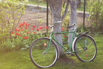 Soviet vintage bicycle in garden