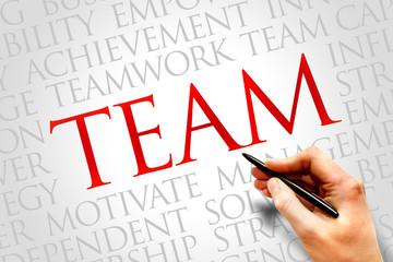 Team word cloud, business concept