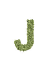 The letter from the alphabet of arugula