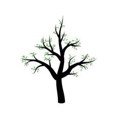 Весеннее дерево, пустившее зеленые веточки с листьями.