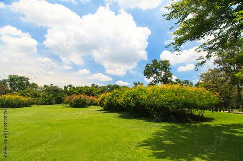 Poster Landschappen Beautiful park