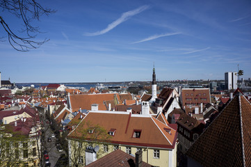 Panorama of old town Tallinn