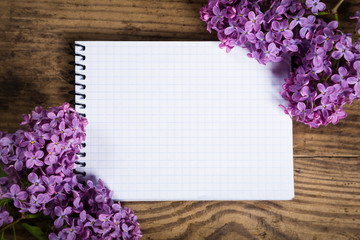 Lilac on white blank sheet
