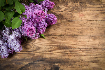 Lilac on brown wood texture