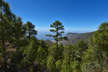 Gran Canaria - Parque Nacional de Tamadaba
