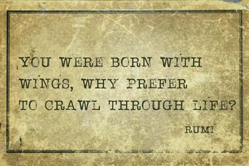 why crawl Rumi
