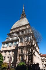 Mole Antonelliana - Torino Italy