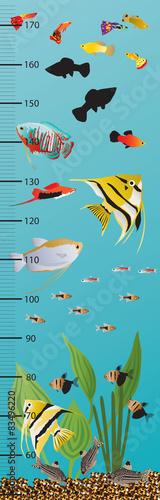 Naklejka Ryby, akwarium, woda, miarka