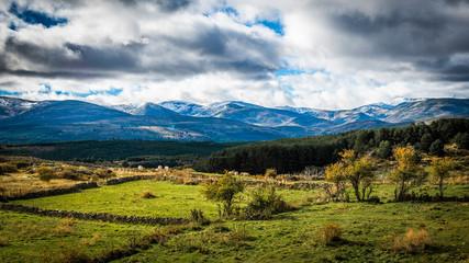 Sierra de Gredos, province of Avila, Castile Leon.