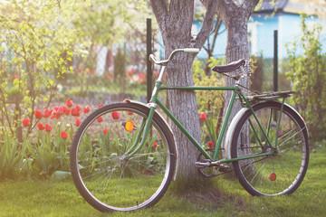 USSR retro bicycle in spring garden