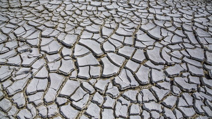 Land Cracked From Drought.