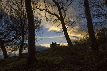 UK, Scotland, Stirlingshire, Stirling, Couple on bench surrounded by trees during the sunset