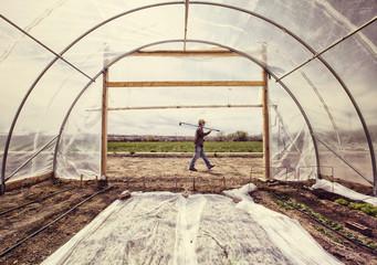 USA, Colorado, Mesa, Palisade, Gardener carrying hoe walking past poly tunnel entrance